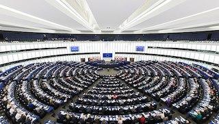 640px-European_Parliament_Strasbourg_Hemicycle_-_Diliff.jpg